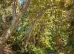brooktree-710-0019